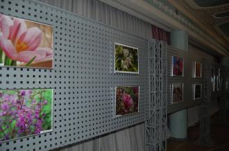 /Files/images/fotoklub_prekrasne_poruch/7,03,2018 1258_n.jpg
